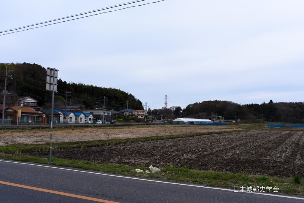 藤沢城遠景